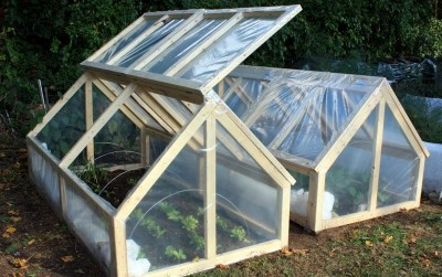 diy_mini_greenhouse_6.jpg